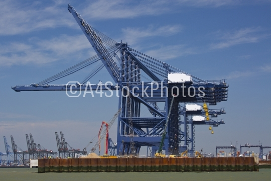 Giant dockside cranes against a bright blue sky
