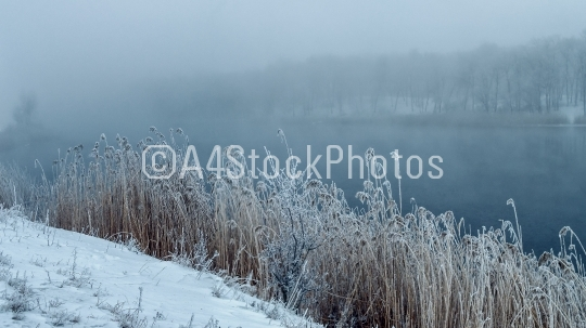 Winter fog in the freezing river