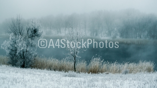Winter fog in the river